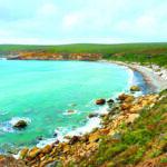 Caravan World Magazine: Beauty And The Ocean Beasts