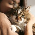 Perth Now: 10 tell-tale signs of a crazy cat person