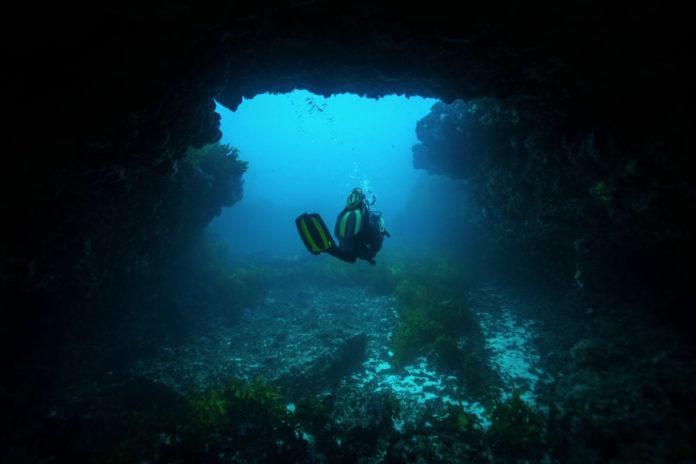 rottnest island diving